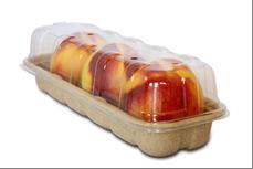 biodegradable green packaging lid