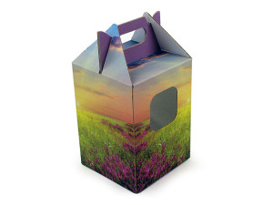 E-Flute Boxes, corrugated boxes, windowed boxes, boxes with windows cutout, diaplay boxes, retail boxes