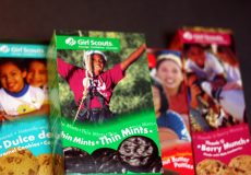 A Sales Kit for a Girl Scout